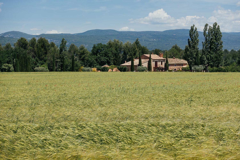 Farm near Roussillon, France.