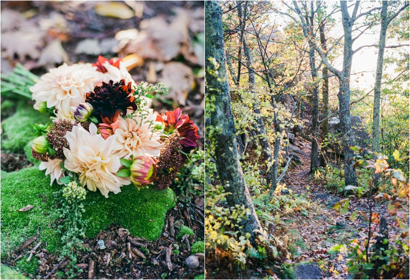 Bridal Inspiration_Virginia Mountain Fall Bride_Zachary_Taylor_Fine_Art_Film_Destination_Wedding_Photographer-15.jpg