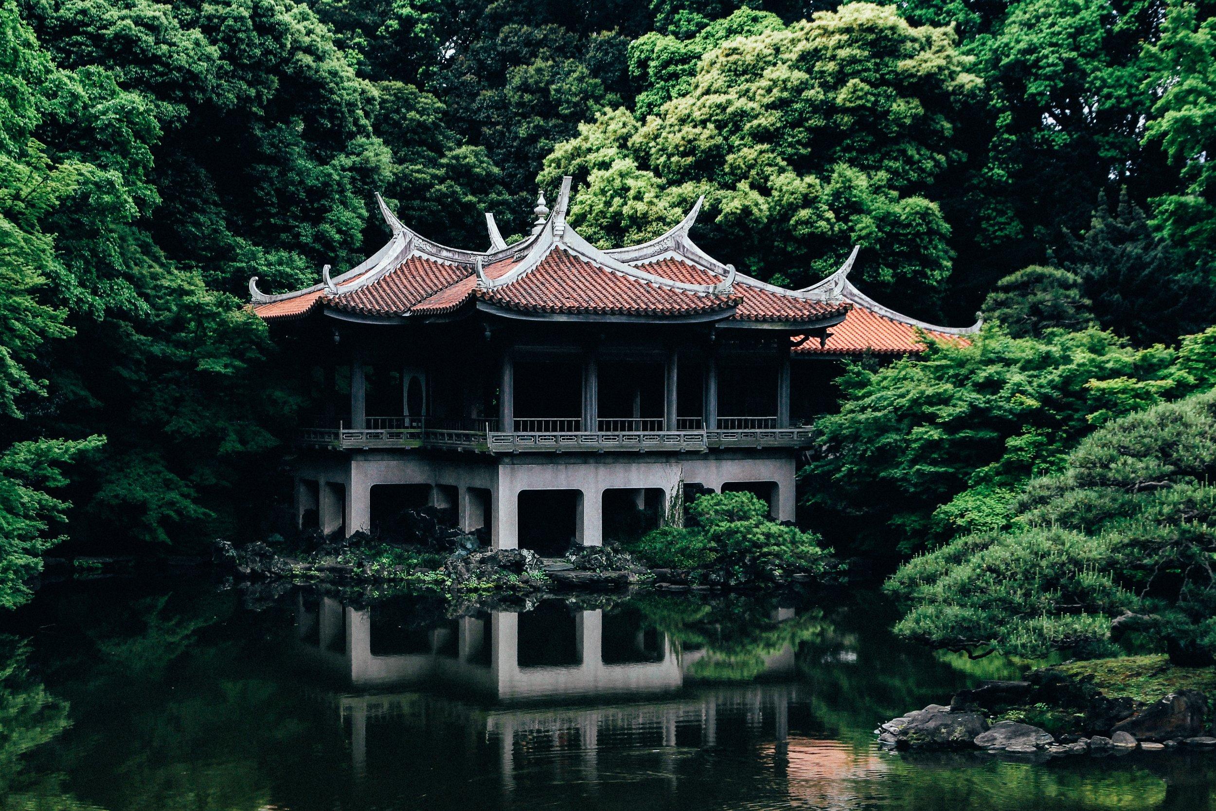 Shinjuku Gyone national garden