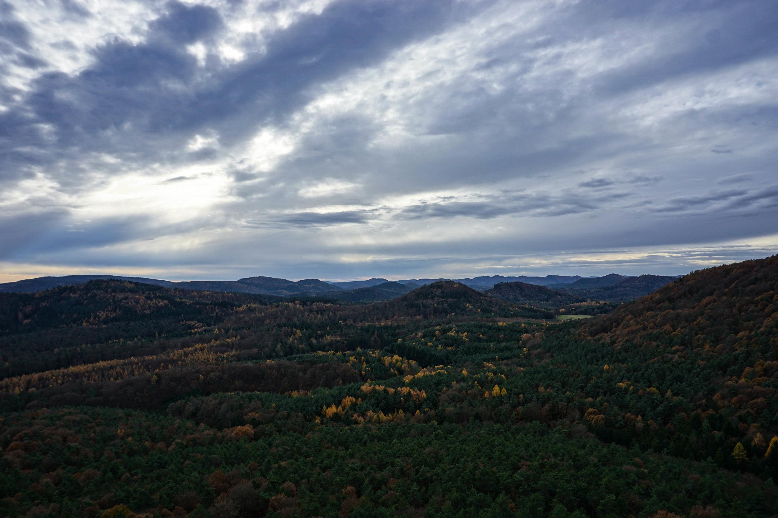 Alsace-02680.jpg