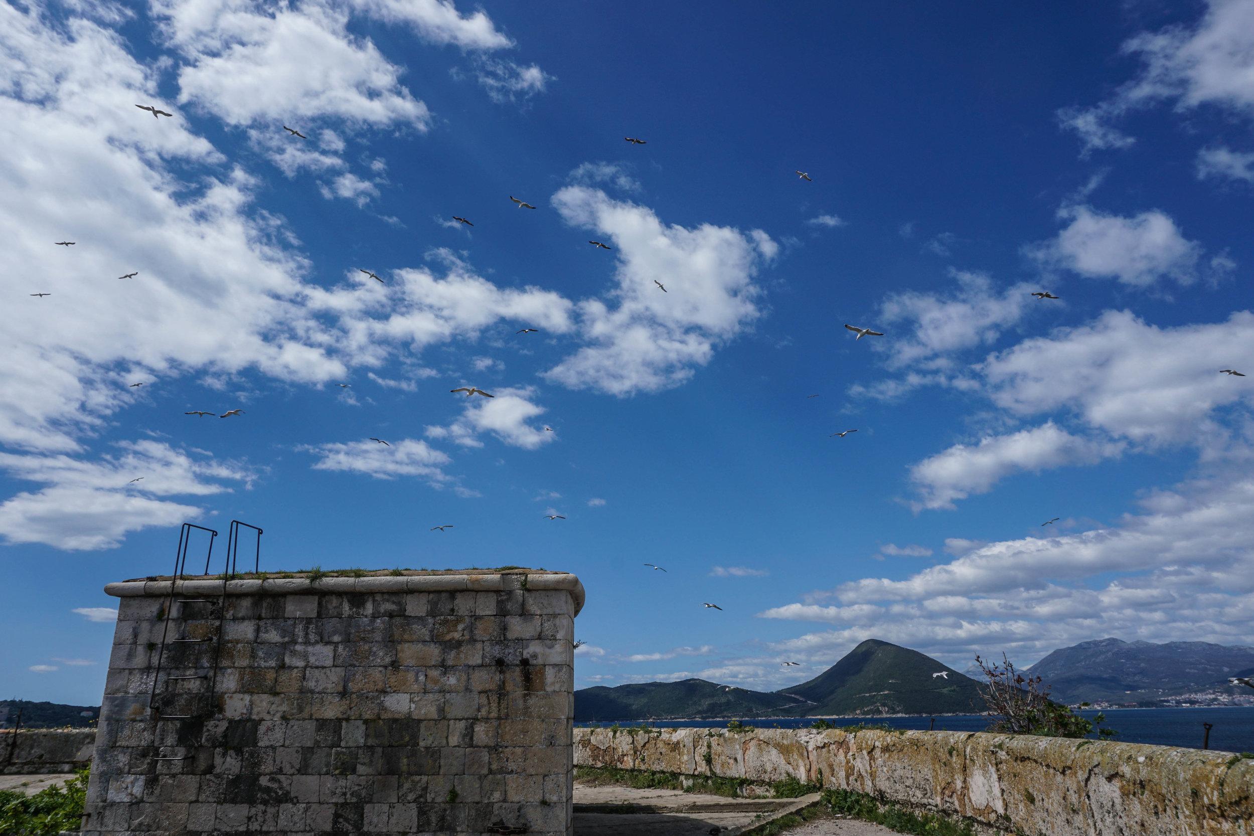 Montenegro-00373.jpg
