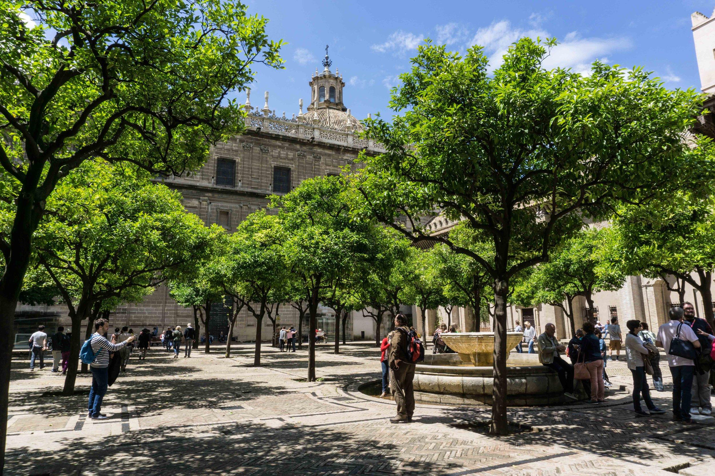 Spain-01112.jpg