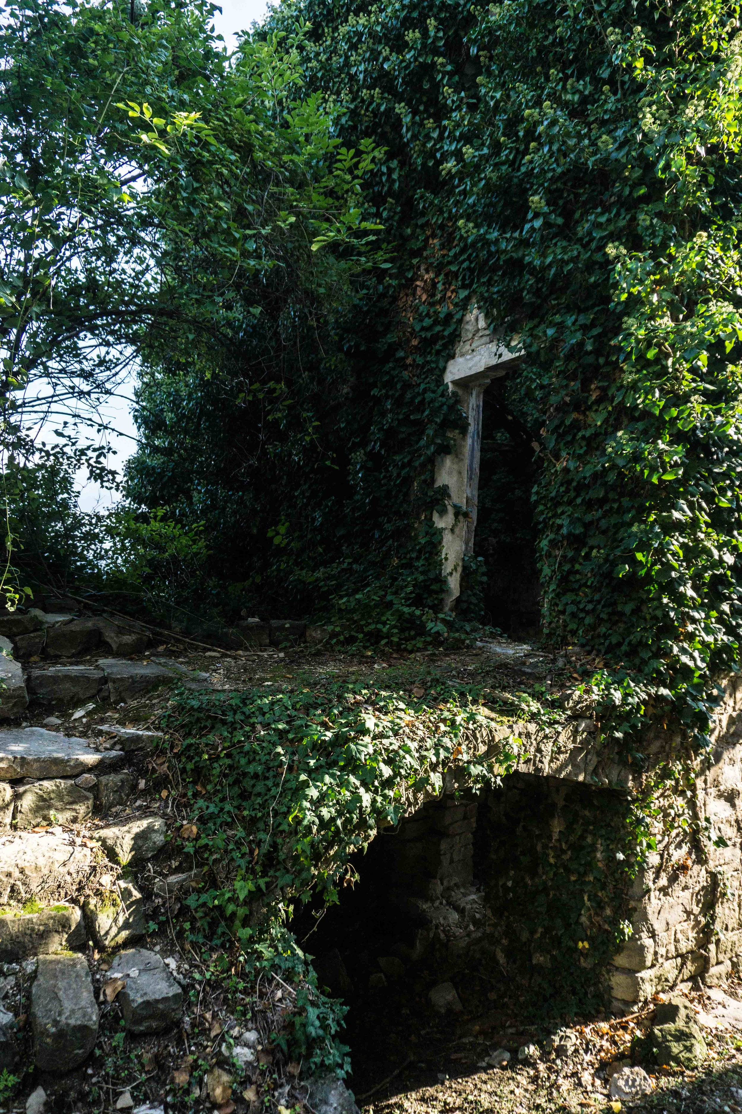 Istria-04329.jpg