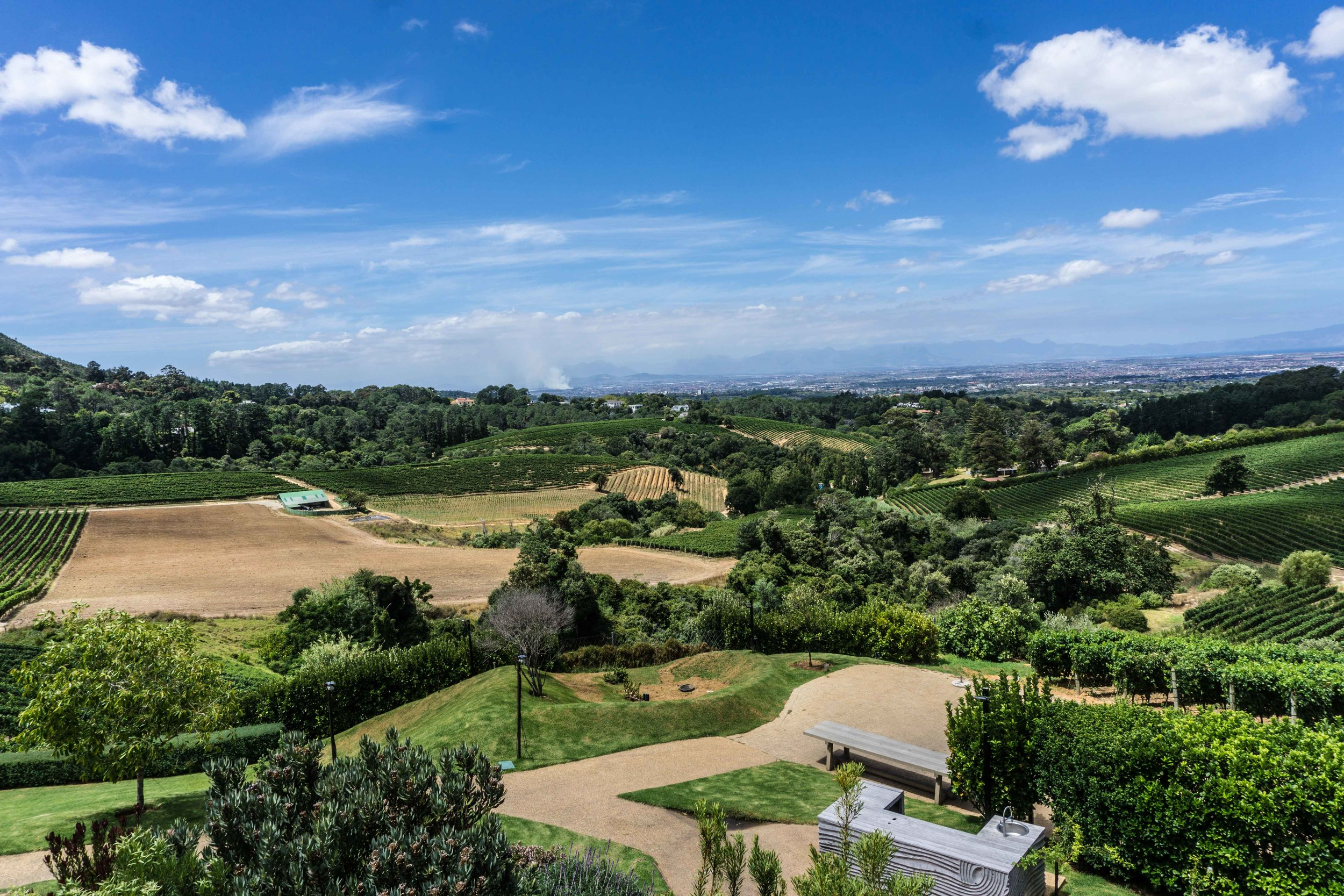 View from Constantia