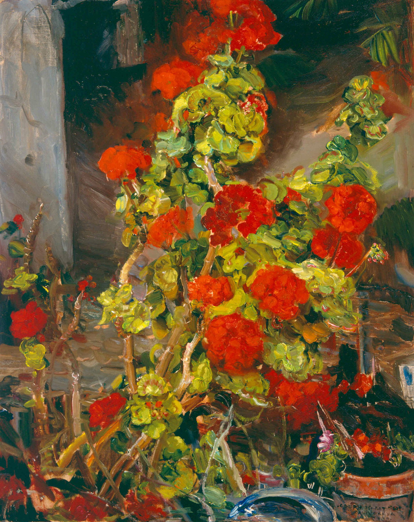 Geraniums   / Oil on Canvas, 30 x 24 in. / Private Collection