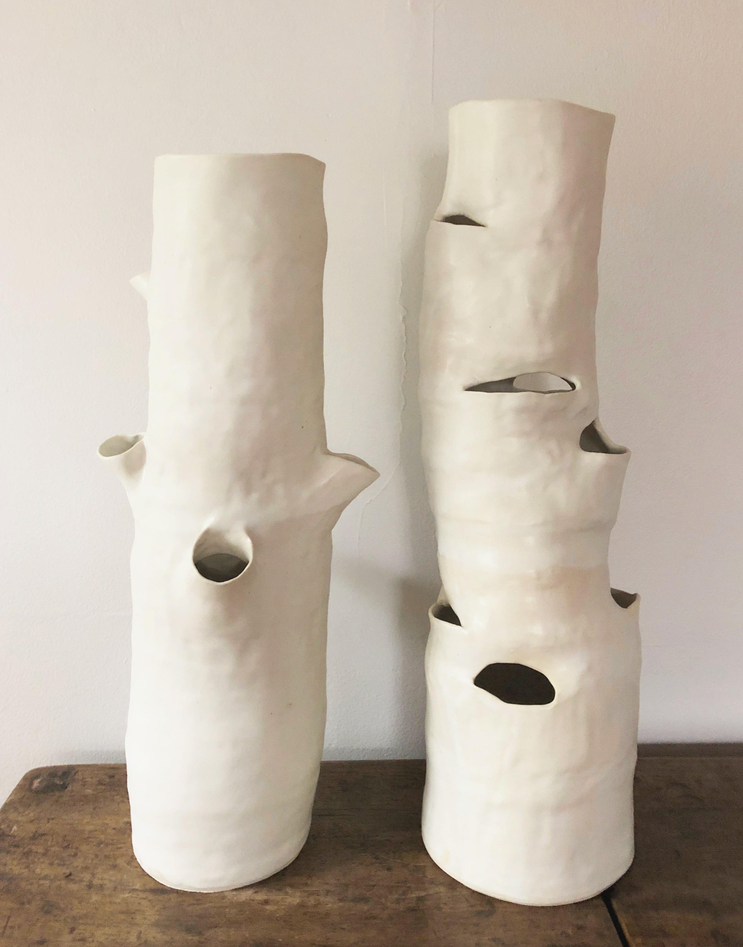 birch vessels
