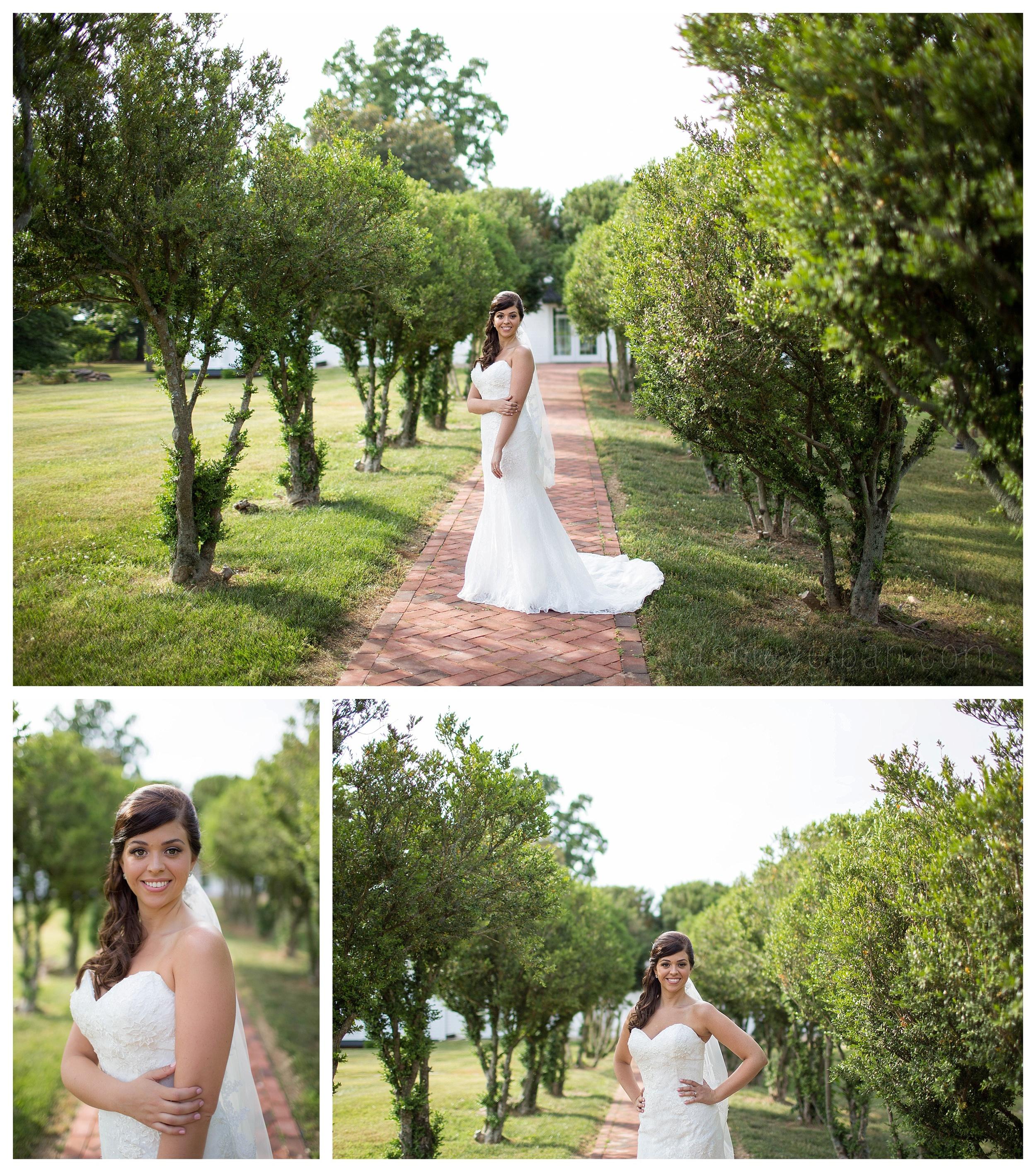 Lynchburg Virginia Wedding Photographer, The Trivium Estates, Ashley Eiban Photography