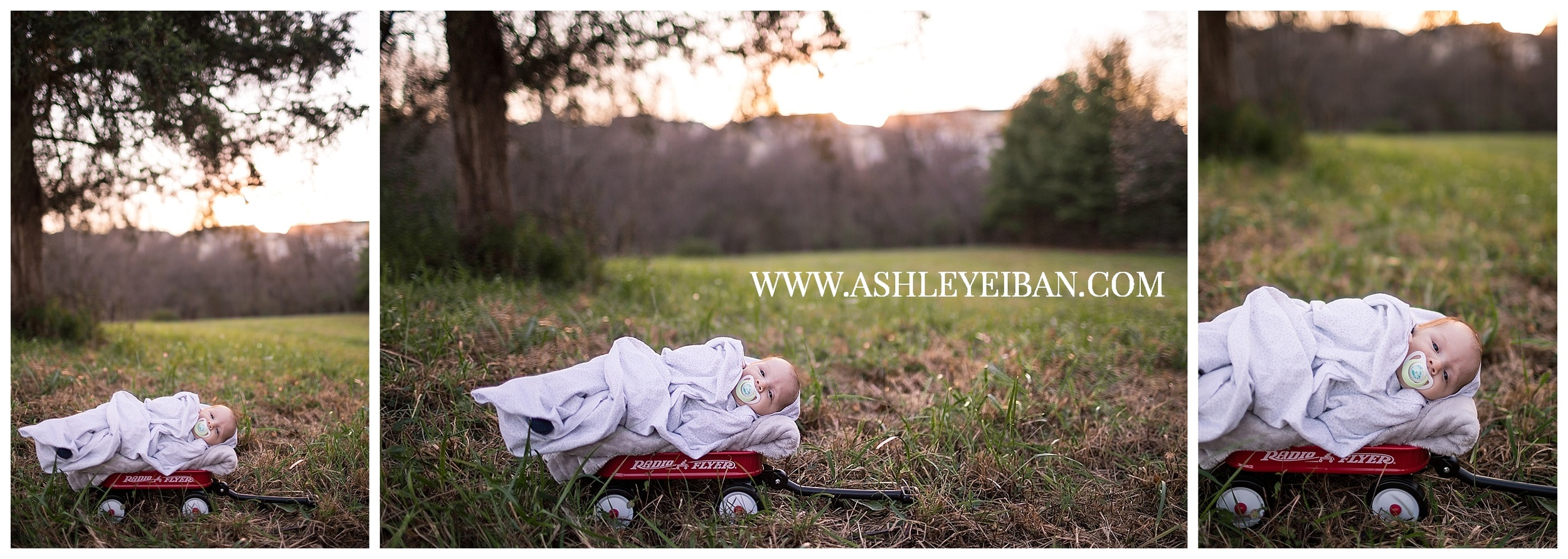 Wedding & Portrait Photographer in Lynchburg, VA || Central VA Family Photographer || Ashley Eiban Photography || www.ashleyeiban.com