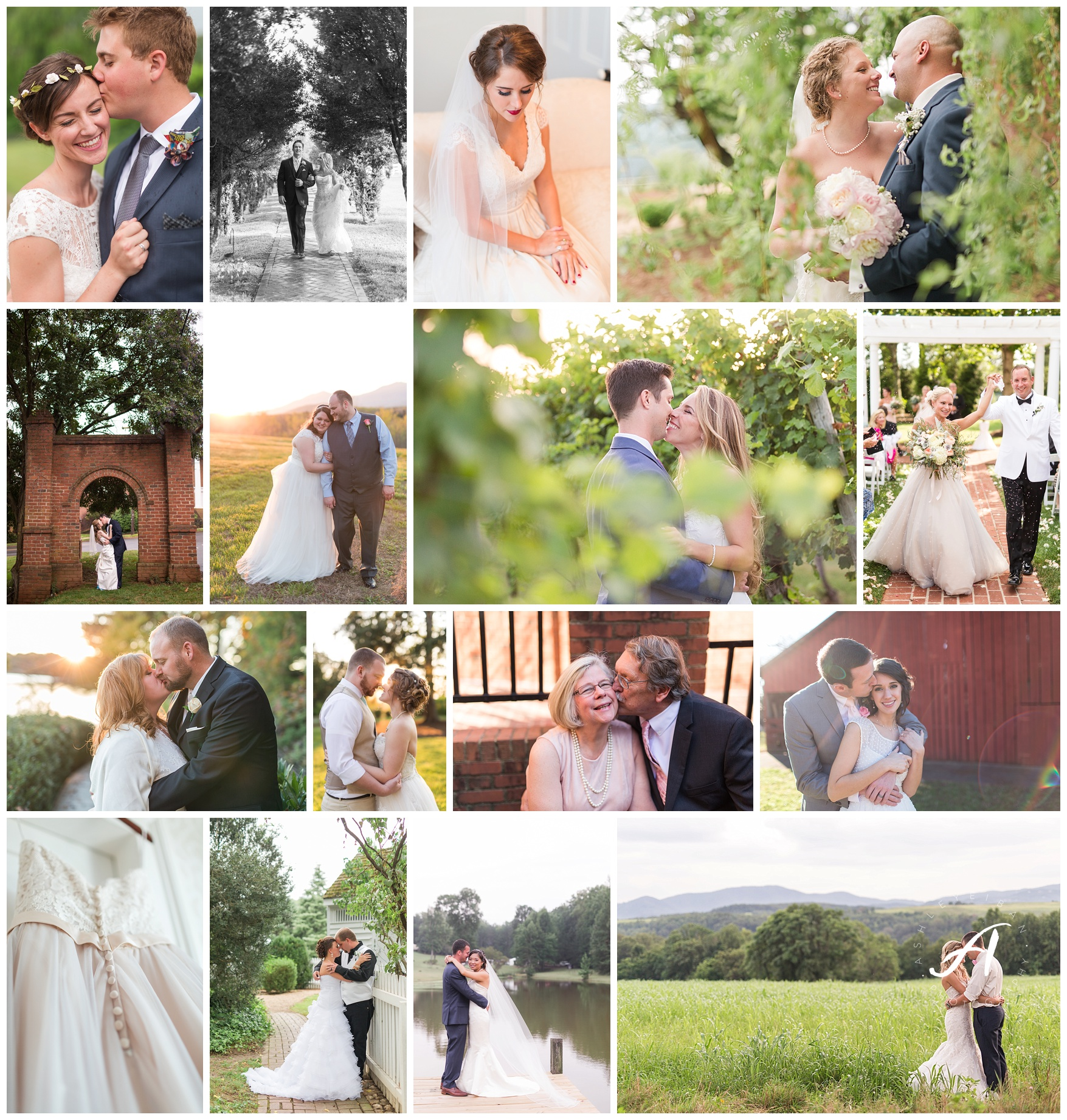 Lynchburg and Charlottesville Wedding Photographer   Central Virginia Wedding Photographers    www.ashleyeiban.com