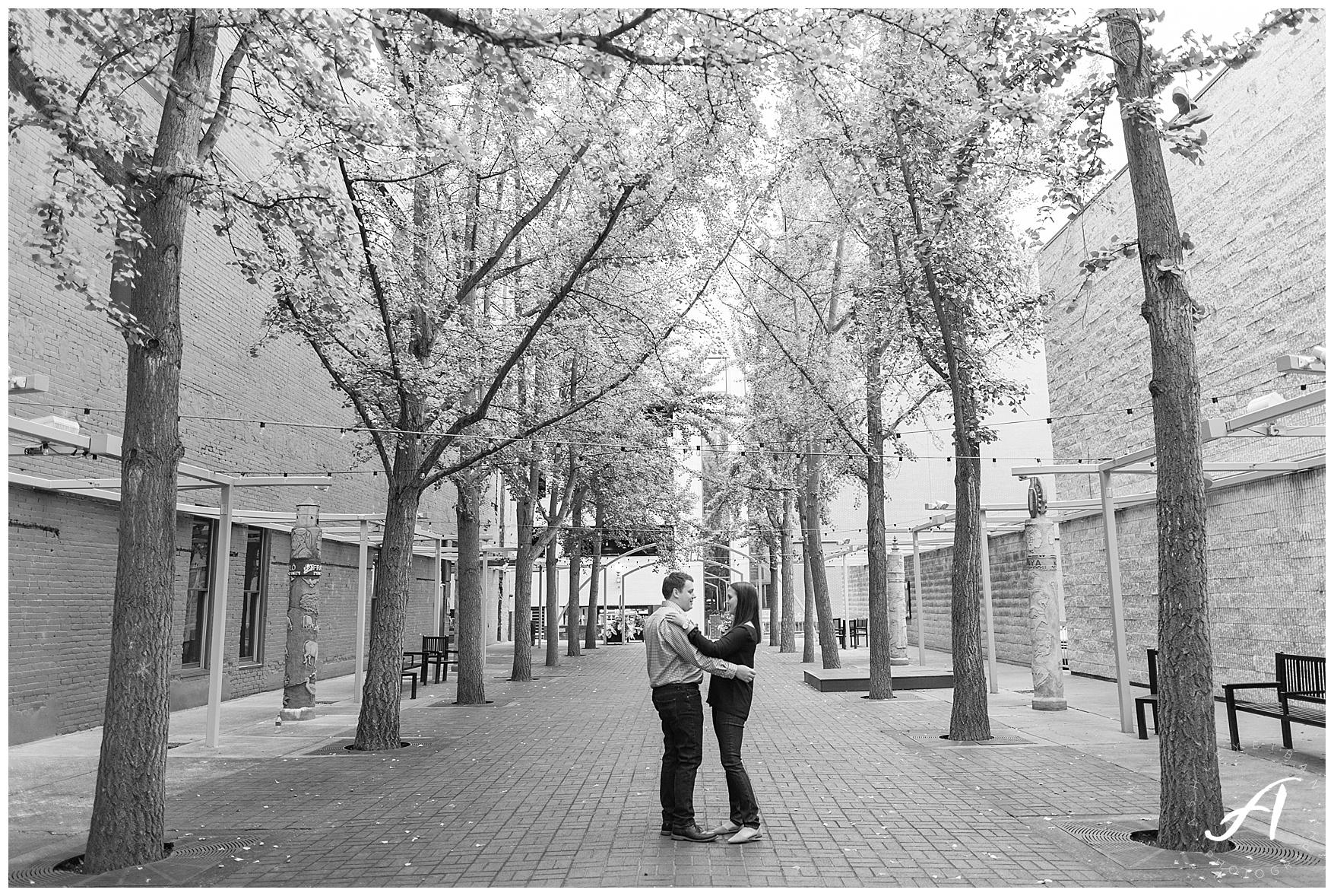 Roanoke and Charlottesville Wedding Photographer || Roanoke Engagement Session || www.ashleyeiban.com