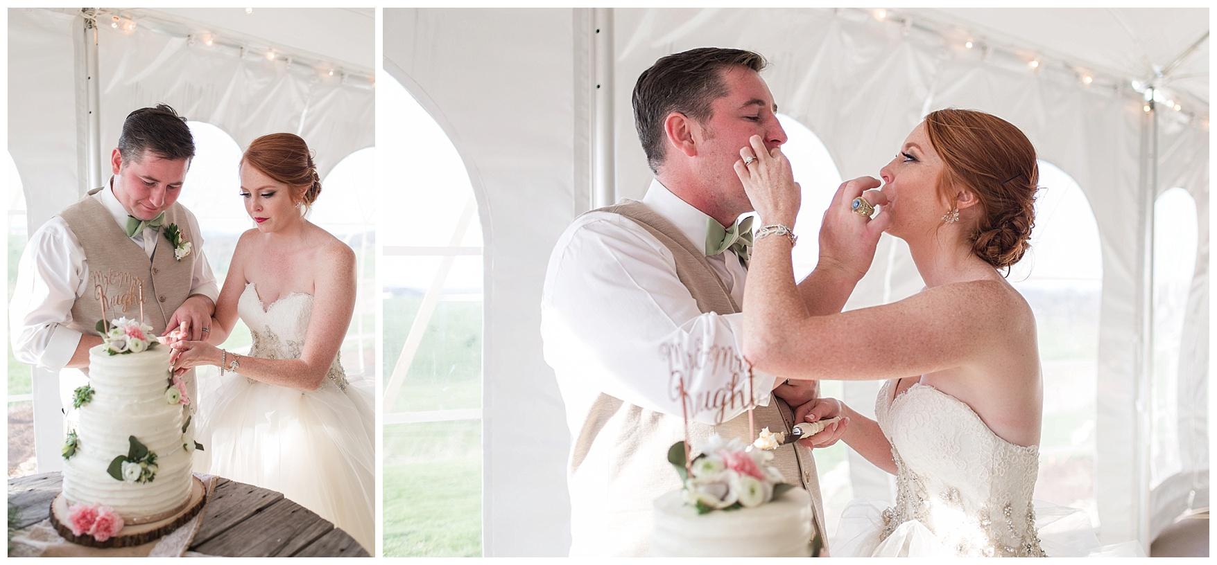 Tent Reception Photos atOn the Sunny Slope Farm Wedding || Harrisonburg, Virginia Wedding Photographer || Lynchburg VA Photographer