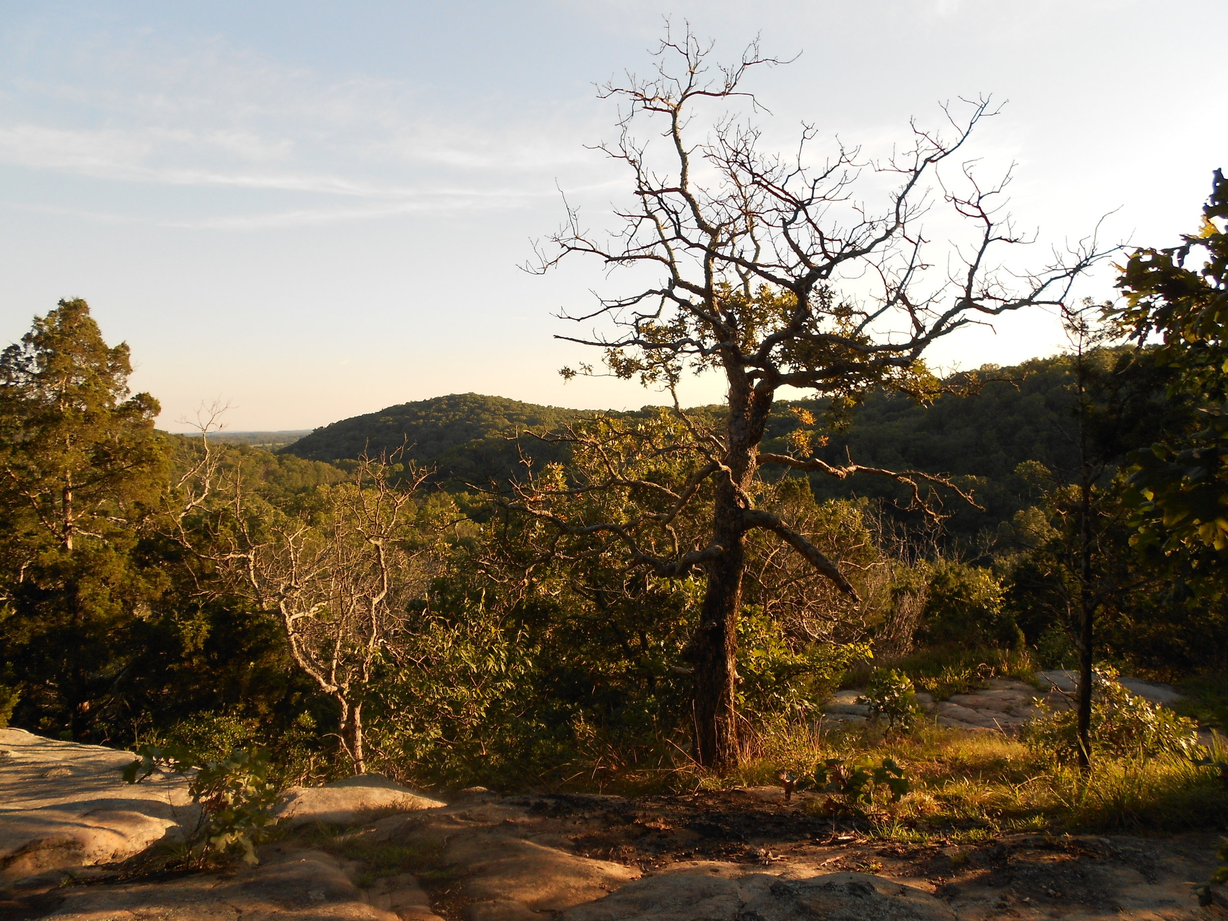 Lusk Creek Wilderness, Shawnee National Forest   Where the glaciers stopped, the ancient and rugged terrain of the Shawnee National Forest remained unscathed. Explore mile after mile along pristine streams, bewildering boulders and hidden canyons.  At the bottom of Illinois nestled between the Ohio and Mississippi rivers, it's okay to ask if we're still in the Land of Lincoln.