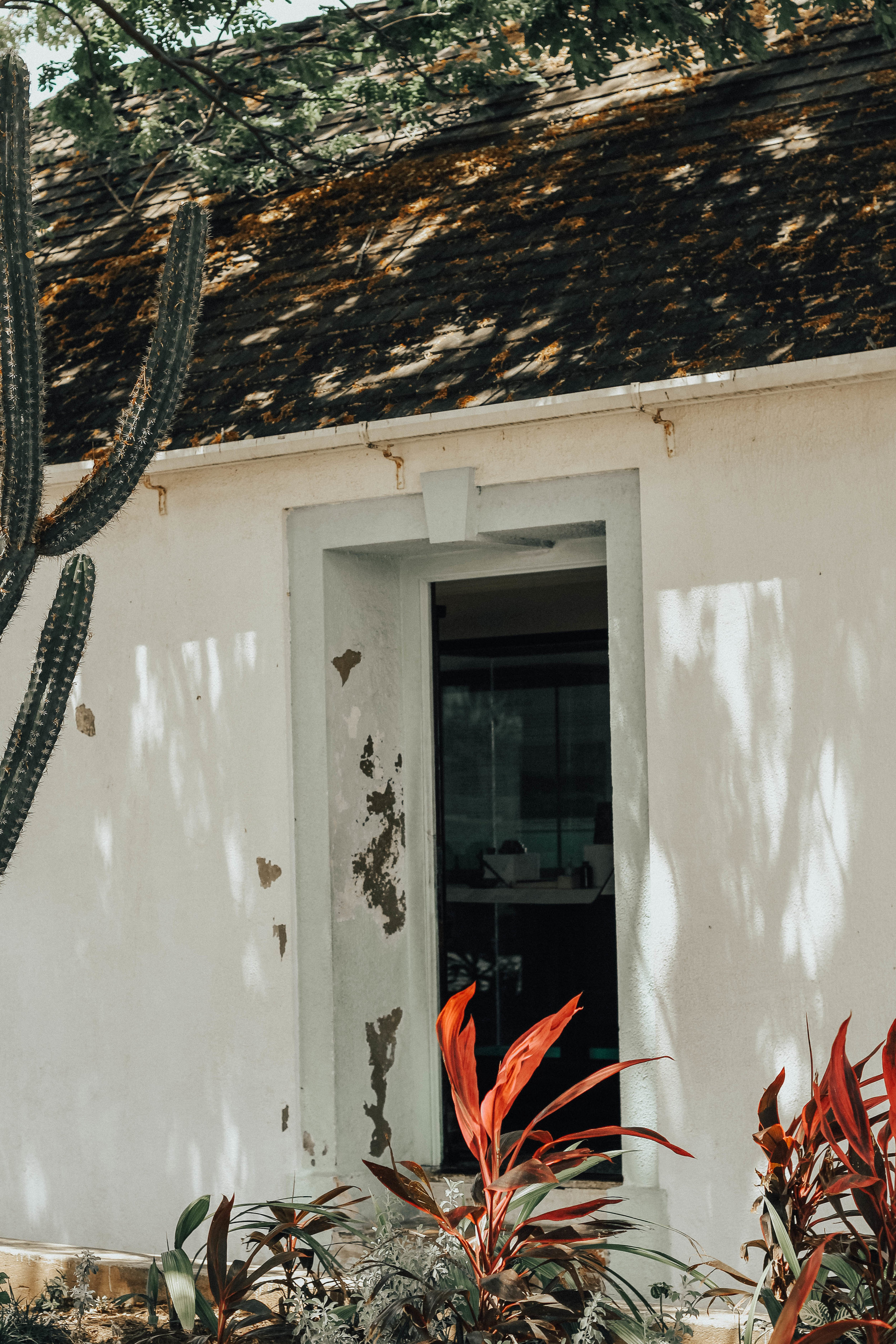Kingston & Ocho Rios, Jamaica | Victoria Bilsborough