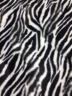 Black and White Zebra Fur