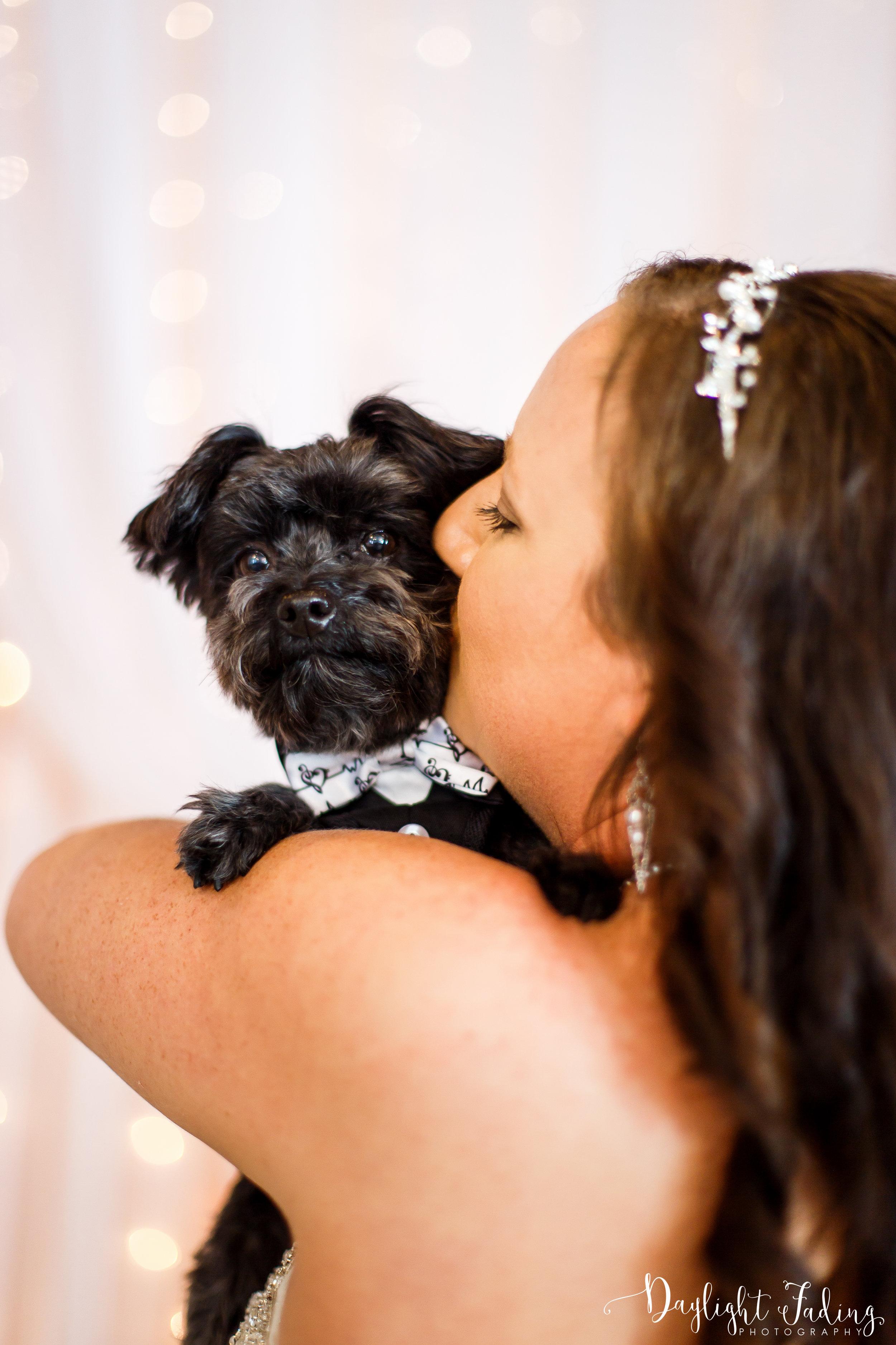 Bride and Dog Ring Bearer in Benton Louisiana Wedding Photographer - daylightfadingphotography.com