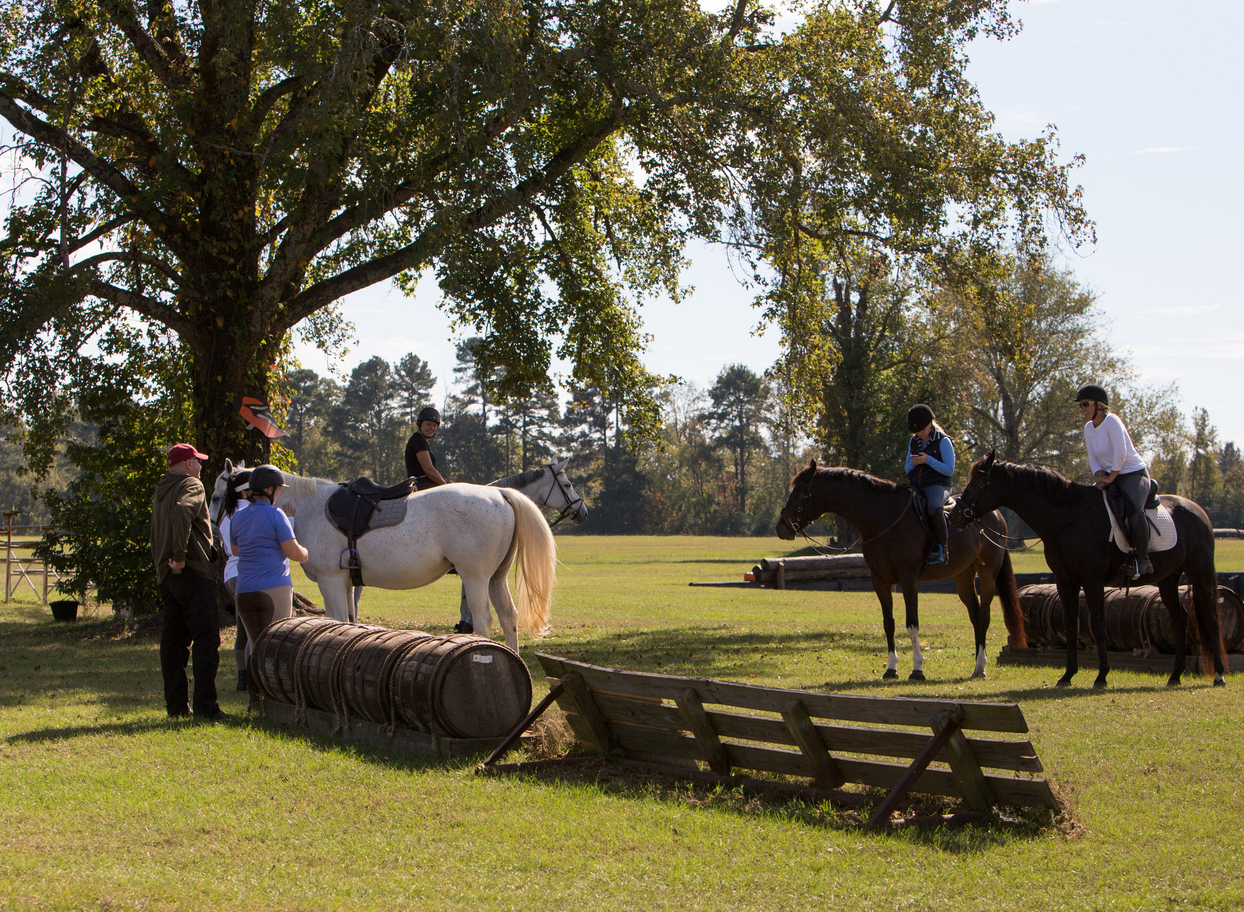Equestrian Proposal