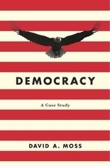DemocracyCaseStudy.jpg
