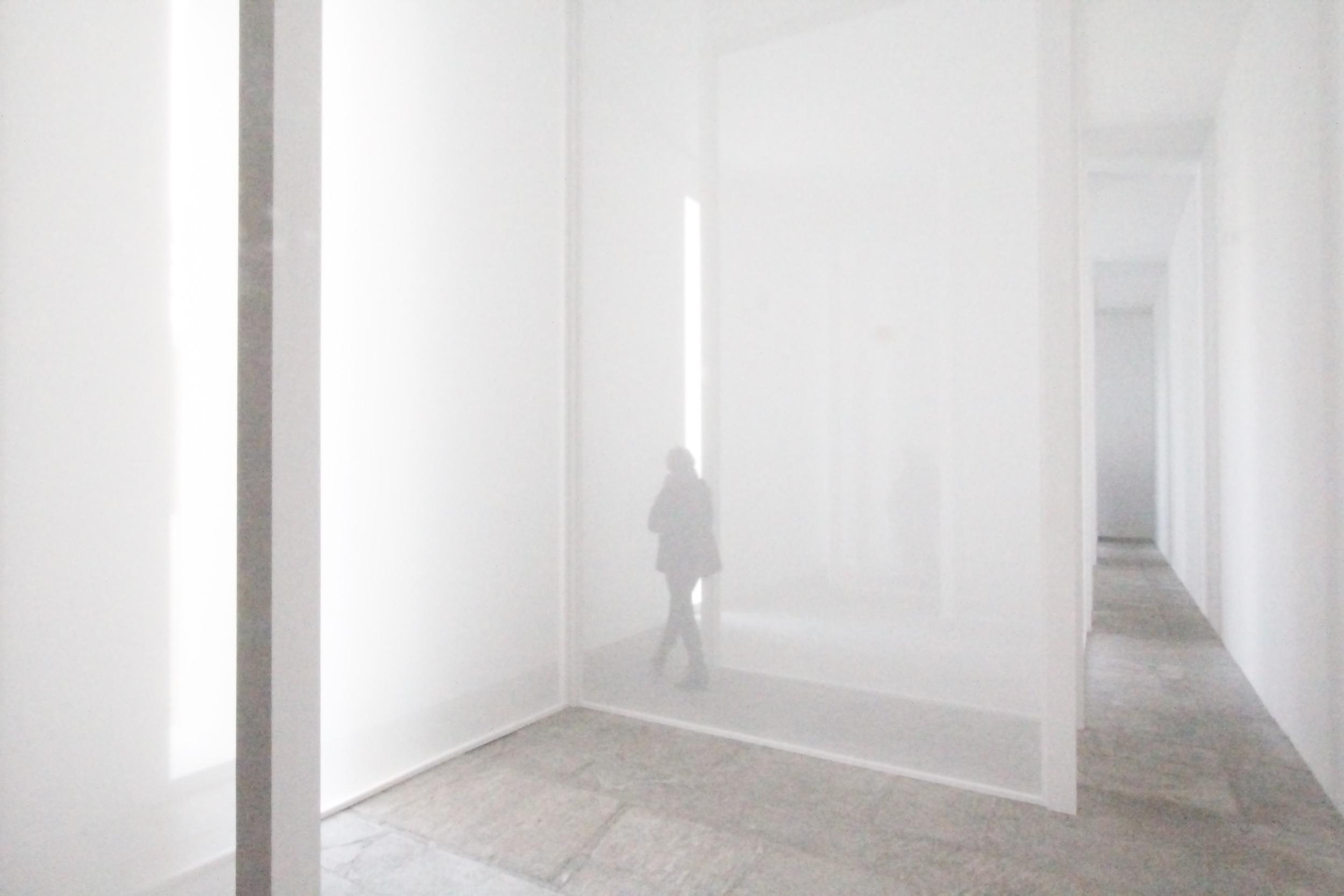 Varese Scrim 2013.  Robert Irwin ; nylon scrim.