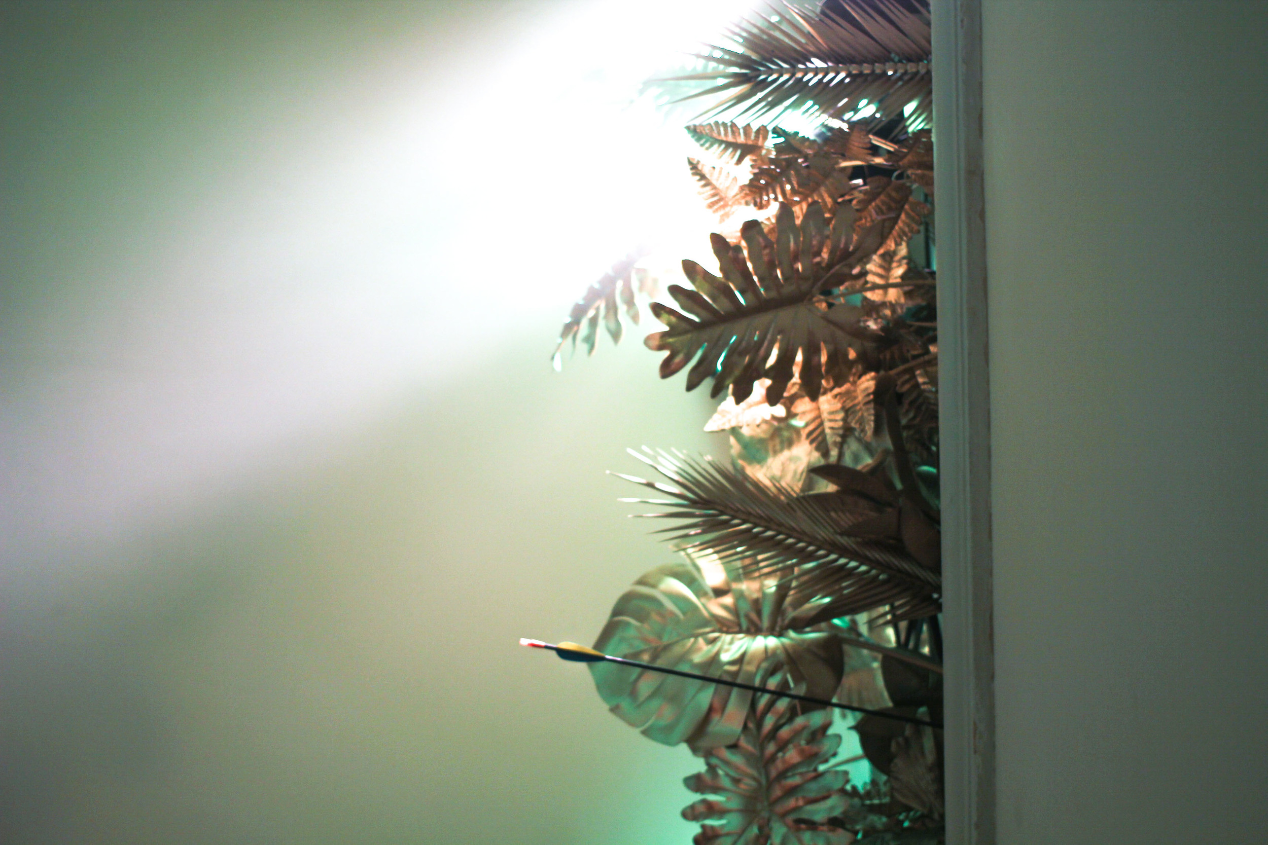 Forest in   AGAXA. 10 Secret Treasures  . image©Futurecrafter