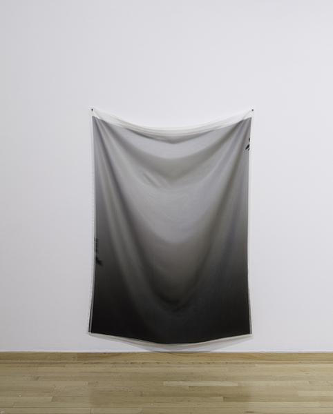 "Failed Monochrome Digital Print on Silk, Digital Print on Organza, 4' 6"" x 3"""