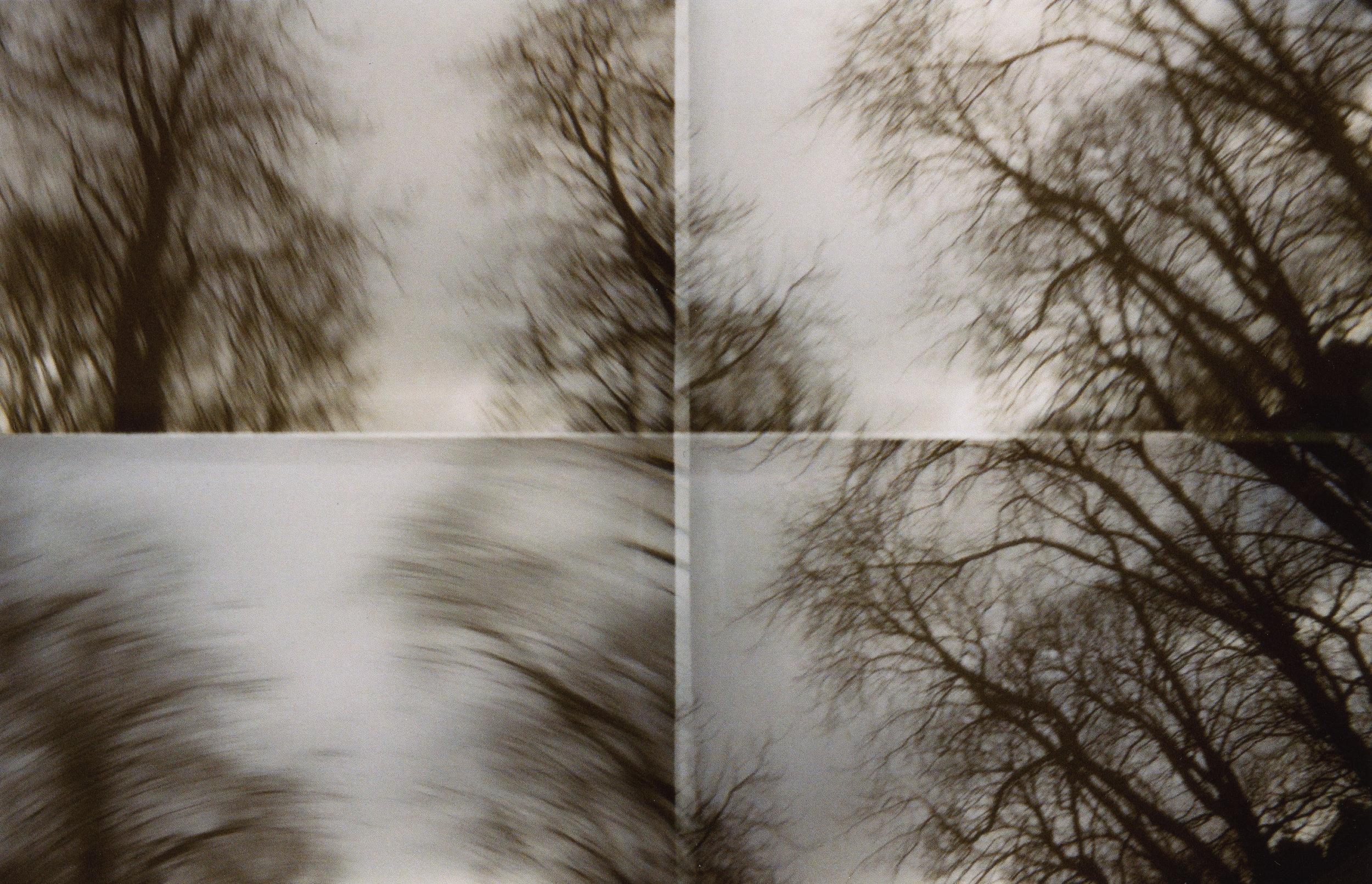 Facing Reality 4.jpg