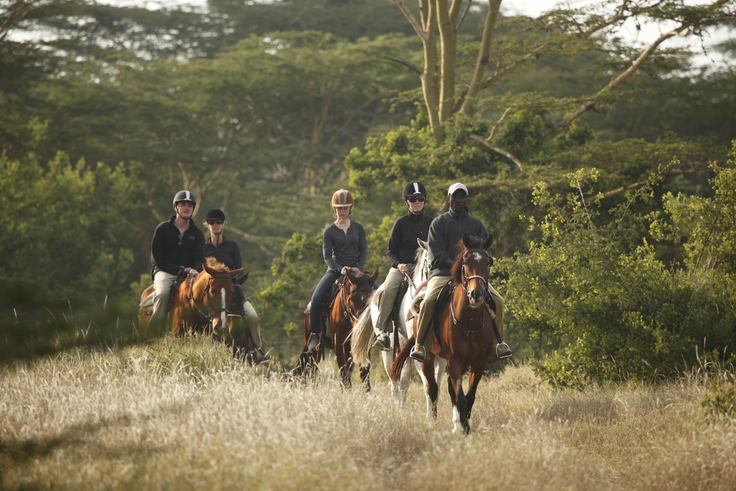Solio Lodge Wildlife (13).JPG