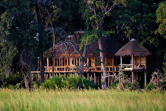 Jao Camp - Botswana