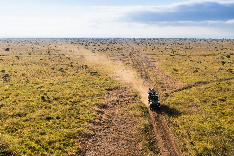 Safari Collection - copyright Scott Ramsay - @love_wild_africa-570.jpg