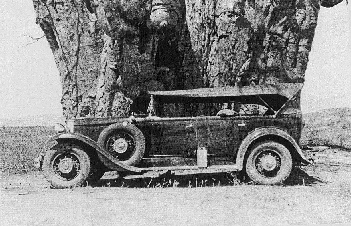 Safari Car.jpg