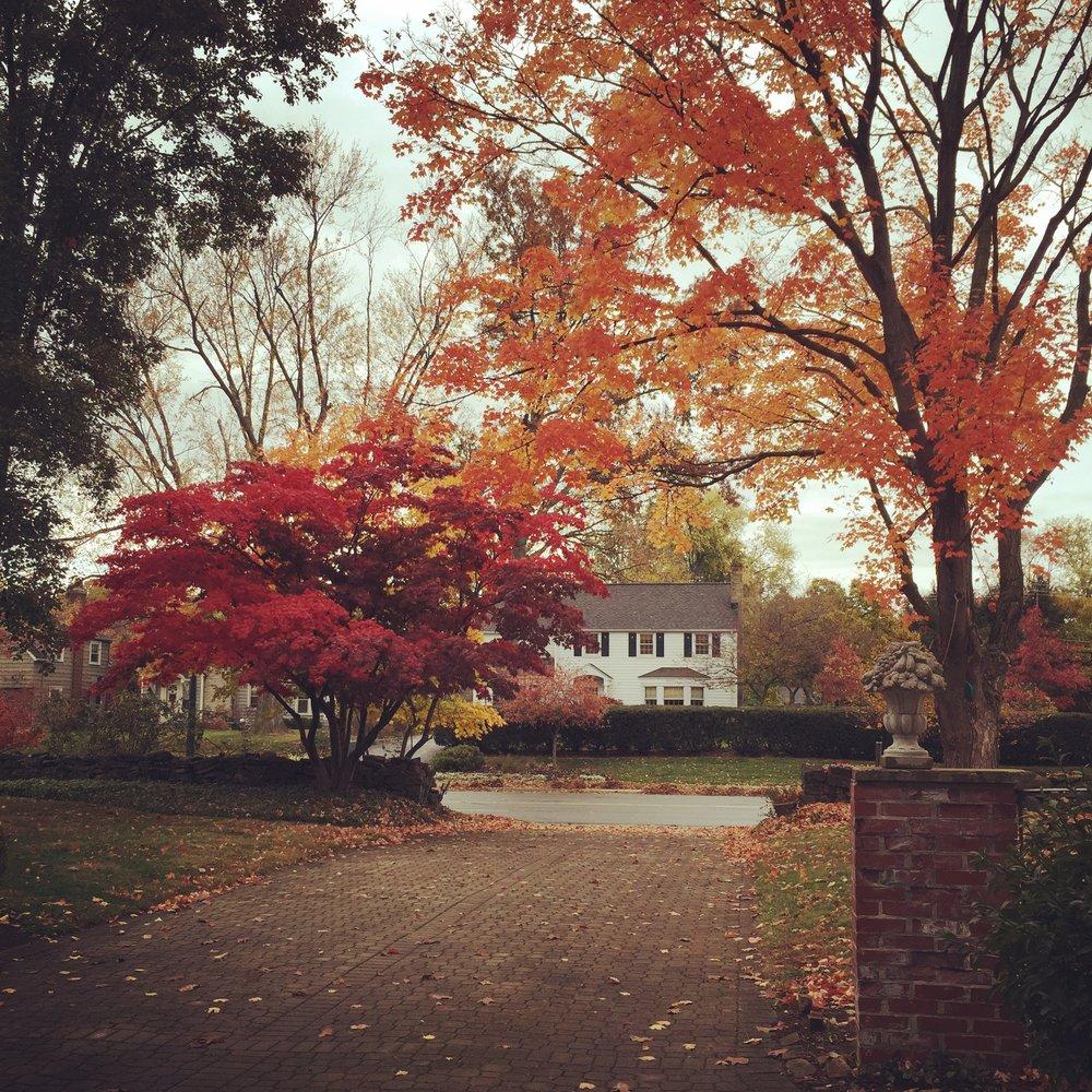 Lane+Ave+Fall.jpg