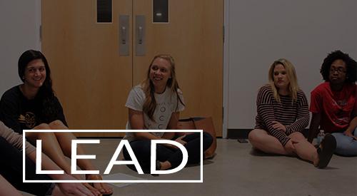 lead_dark.jpg