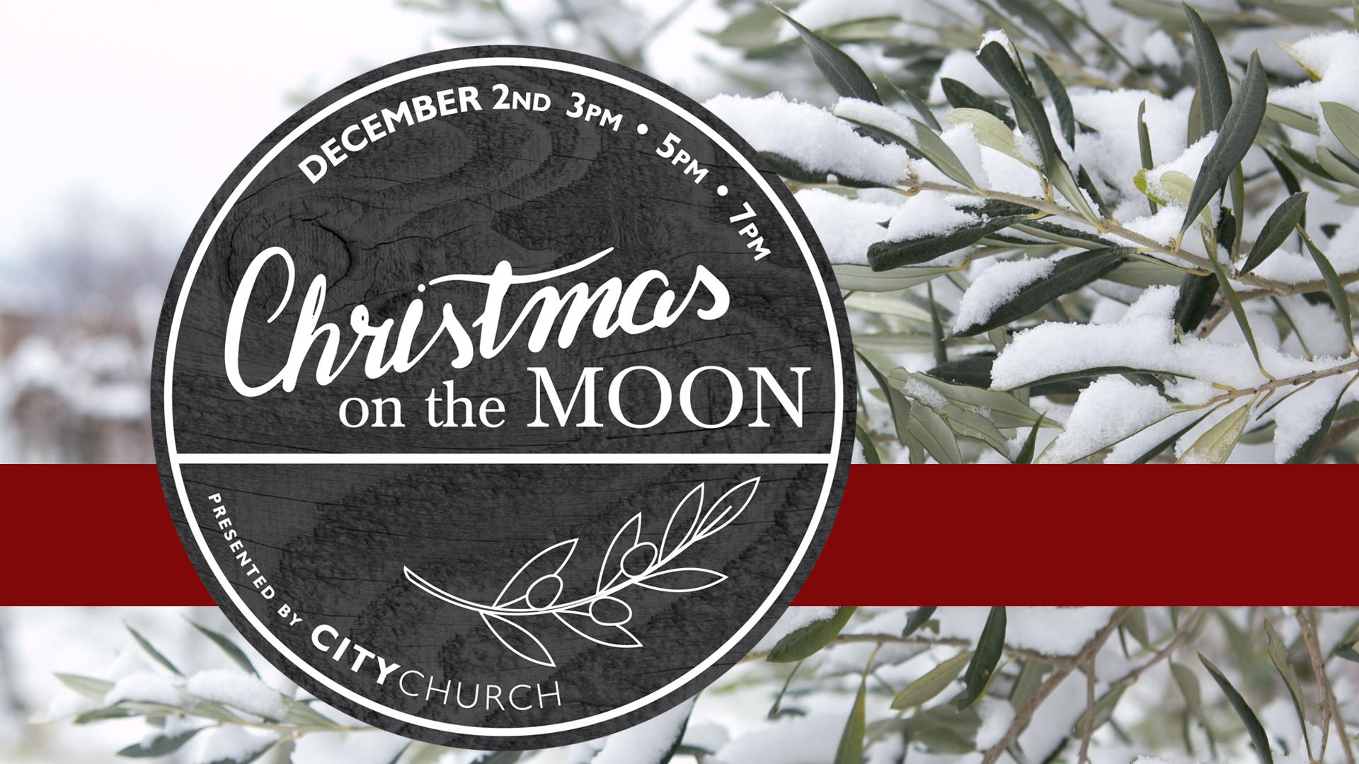 Christmas on the Moon Banner.jpg