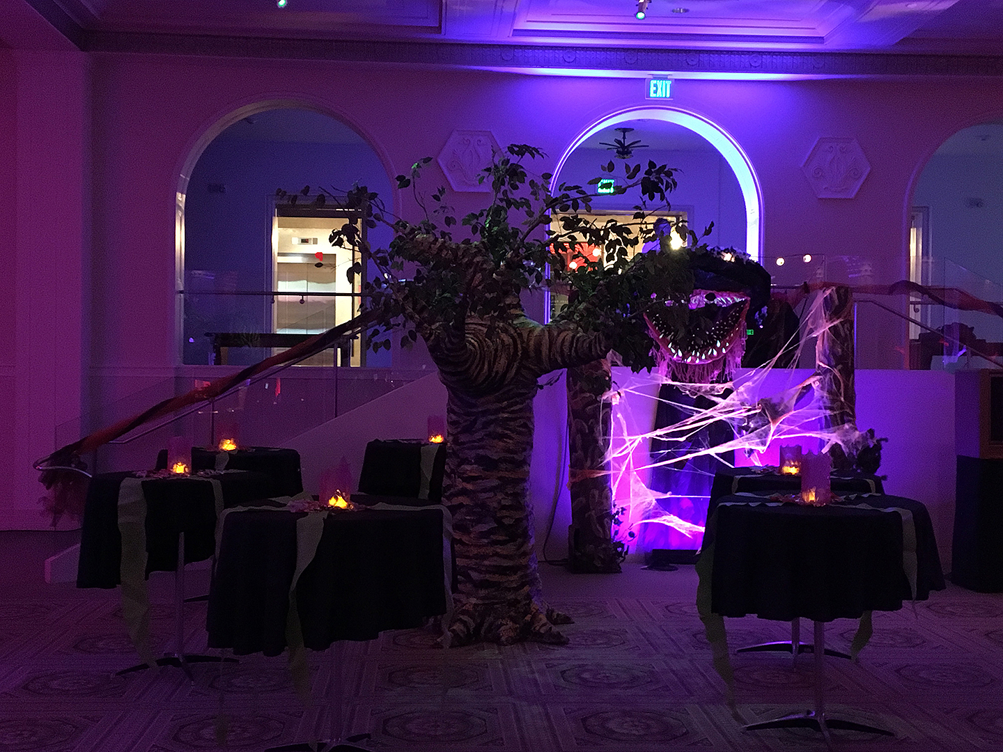 nw film fest party persimmon tree1 web.jpg