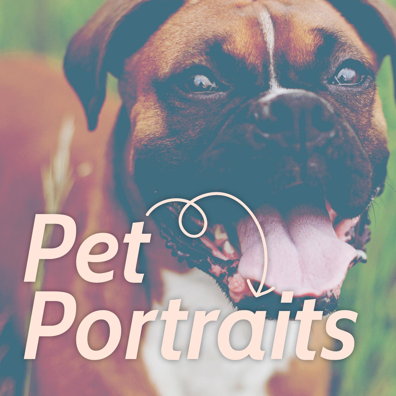 SocialMedia_Custom-Pet_Before&After.jpg