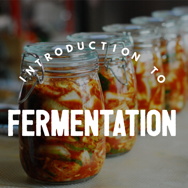 Intro to Fermentation.png