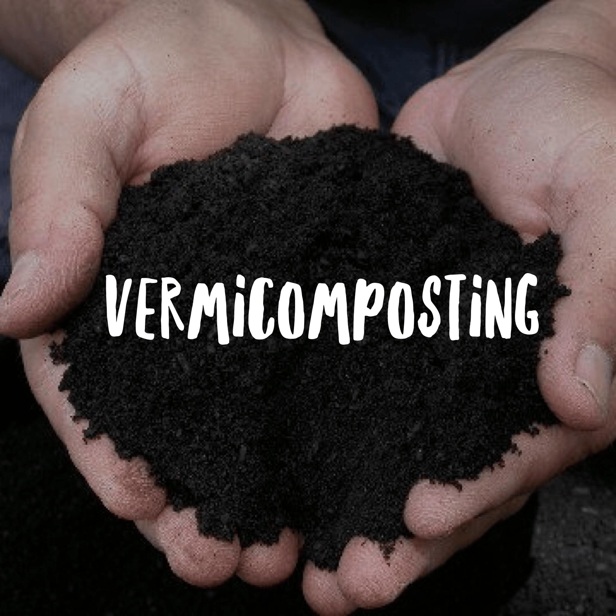 vermicomposting.png