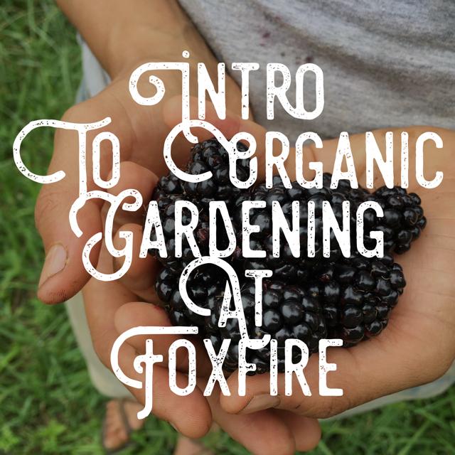 Intro to Organic Gardening.png