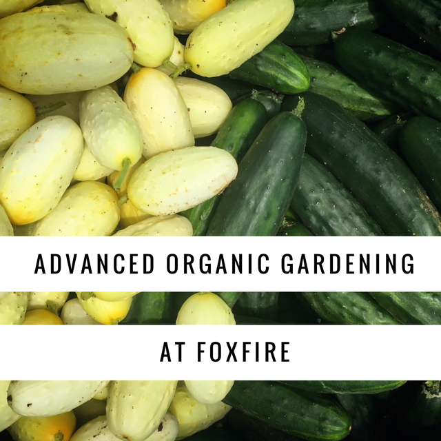 Advanced Organic Gardening.png