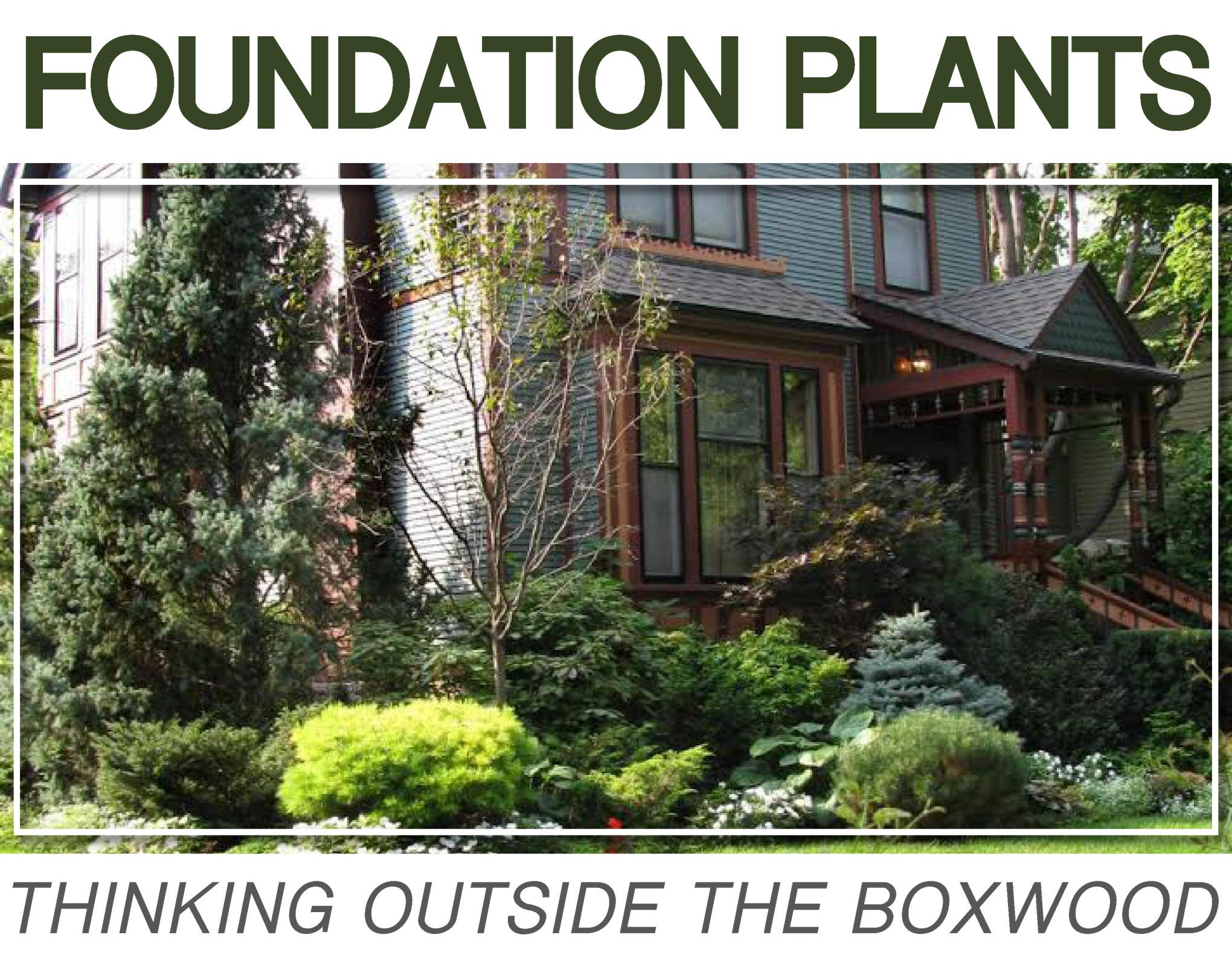 foundationplants.jpg