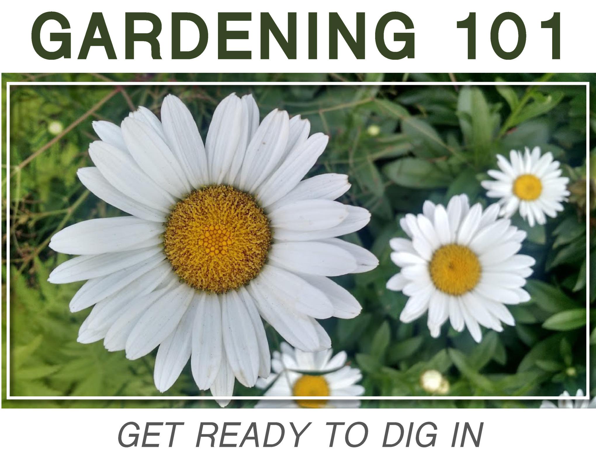 gardening-101_2018.jpg