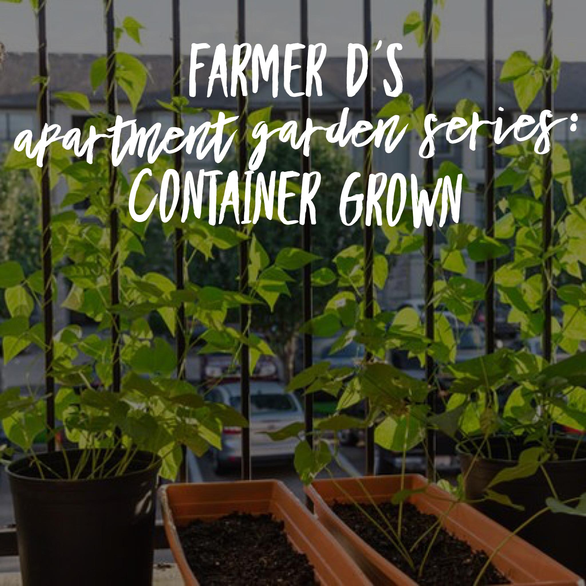 Farmer D\'s Apartment Garden Series: Container Grown — The ...