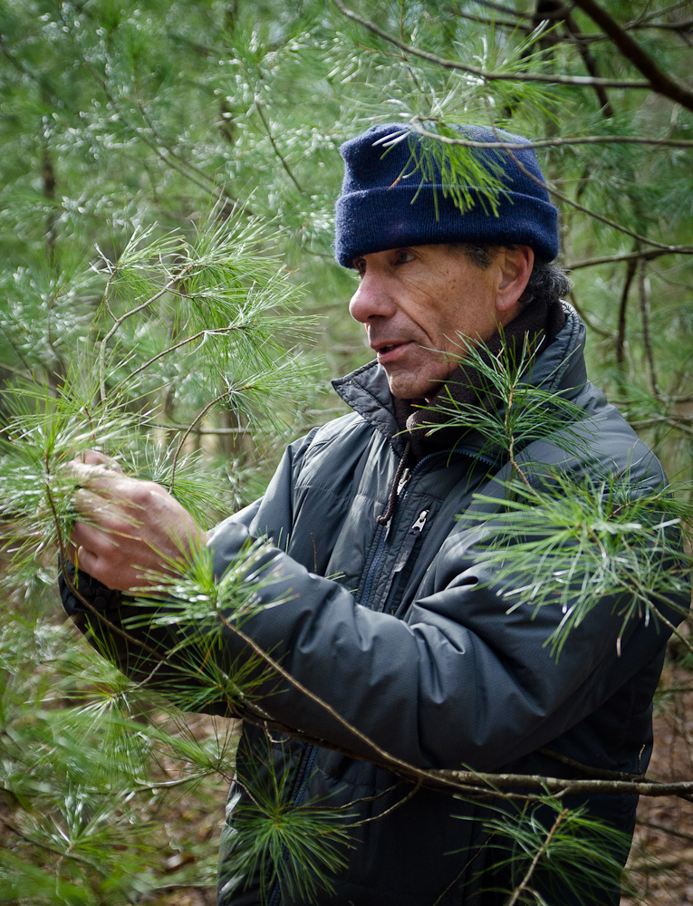 Mark teaching about white pine.jpg