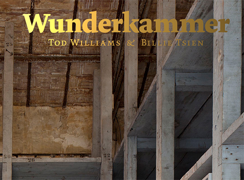 """"""" Inspired by the idea of the  wunderkammer—  """"wonder-room"""" or """"cabinet of curiosities""""—that originated during the Renaissance, world-renowned architects Tod Williams and Billie Tsien invited 35 celebrated architects and designers from around the world to create their own wunderkammers, filling boxes with objects that inspire them."""" published by Yale University Press."""
