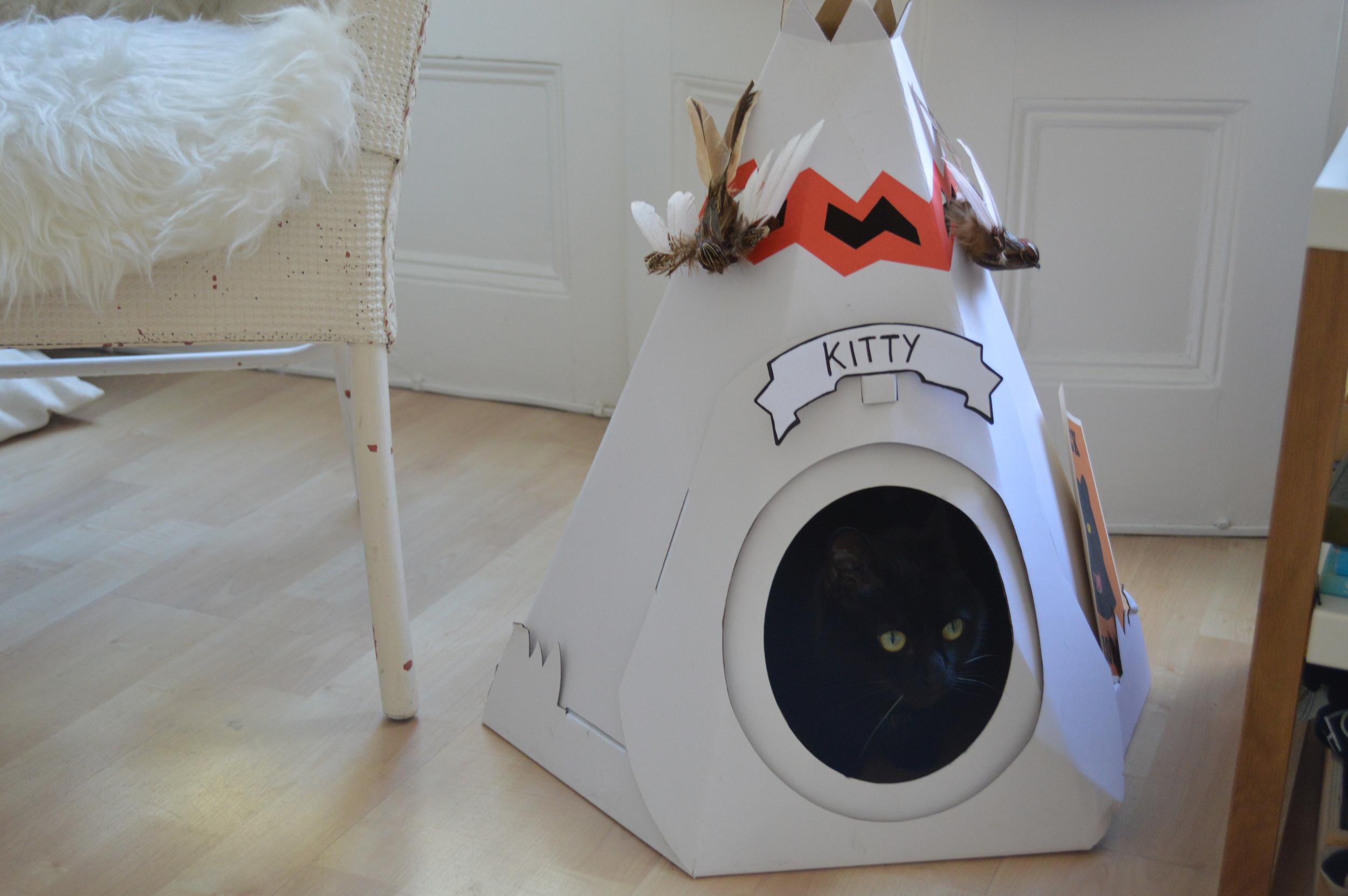 Kitty hiding in her teepee