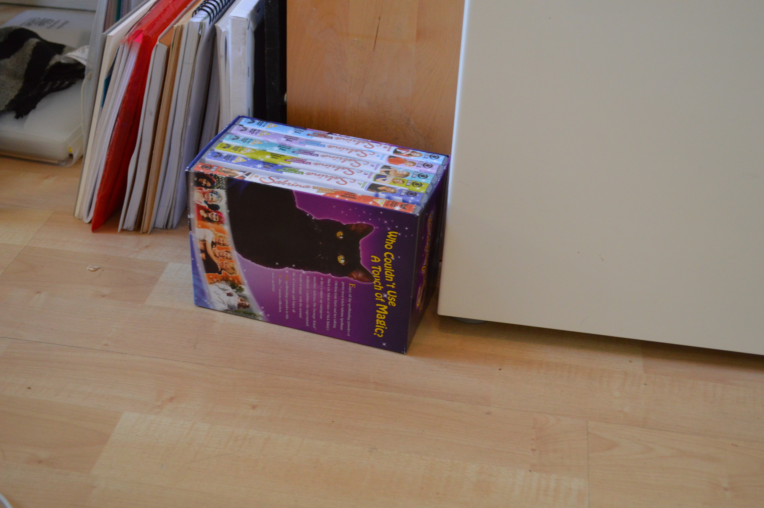 I spotted a Sabrina the Teenage Witch box set. Perhaps Kitty takes Halloween appearance tips from Salem