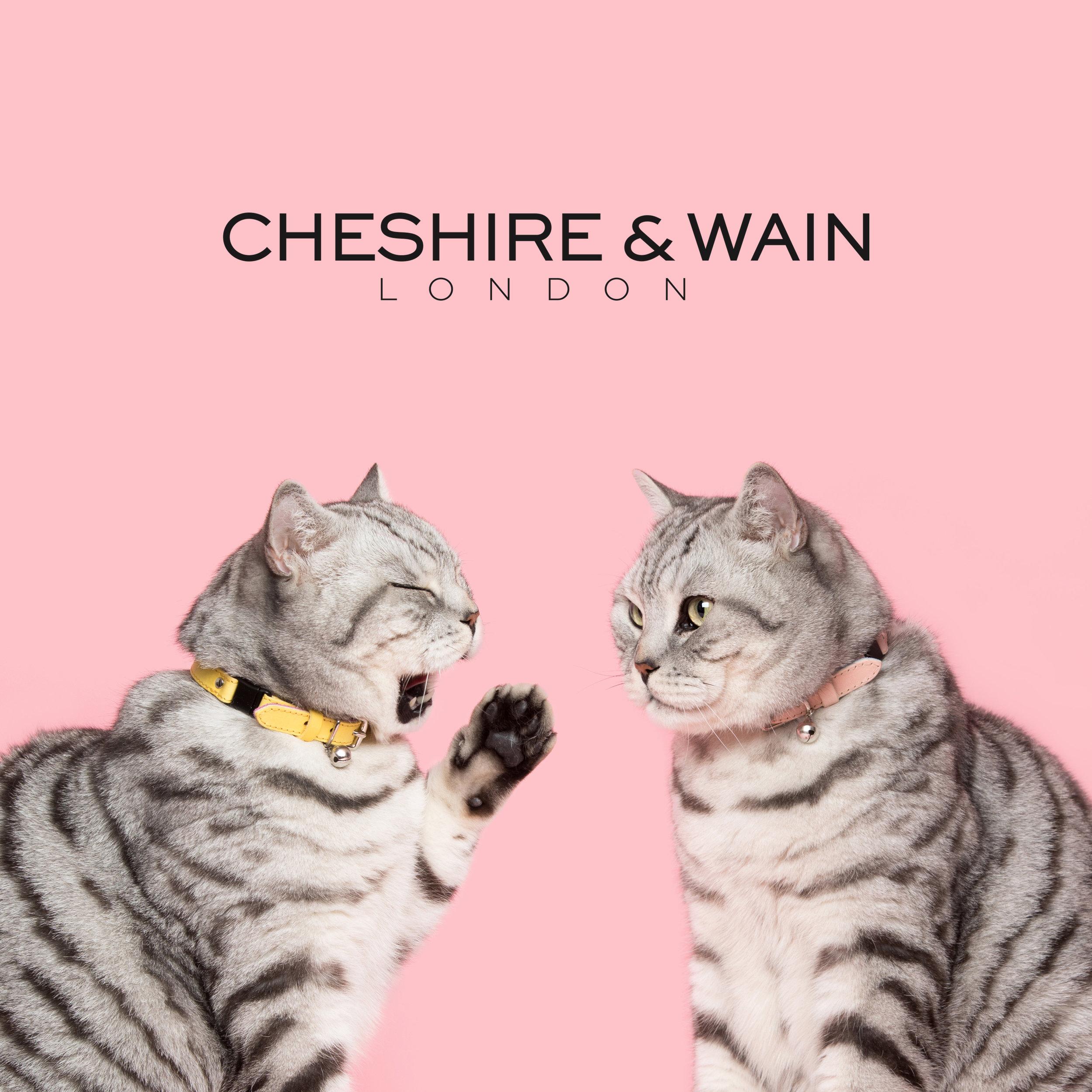 Cheshire&Wain-RachelOates-83 logo.jpg