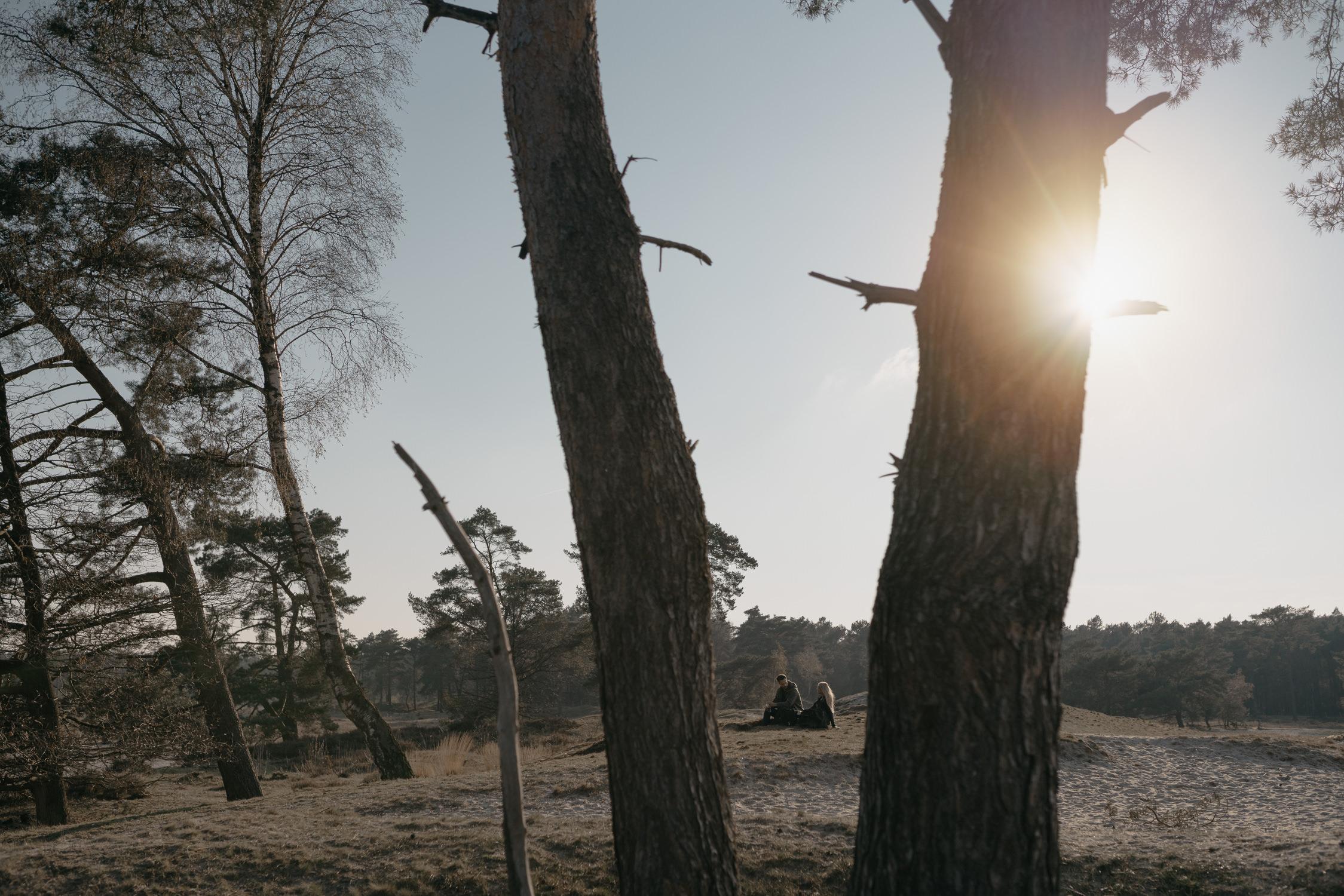 portrait through trees by mark hadden wedding photographer amsterdam