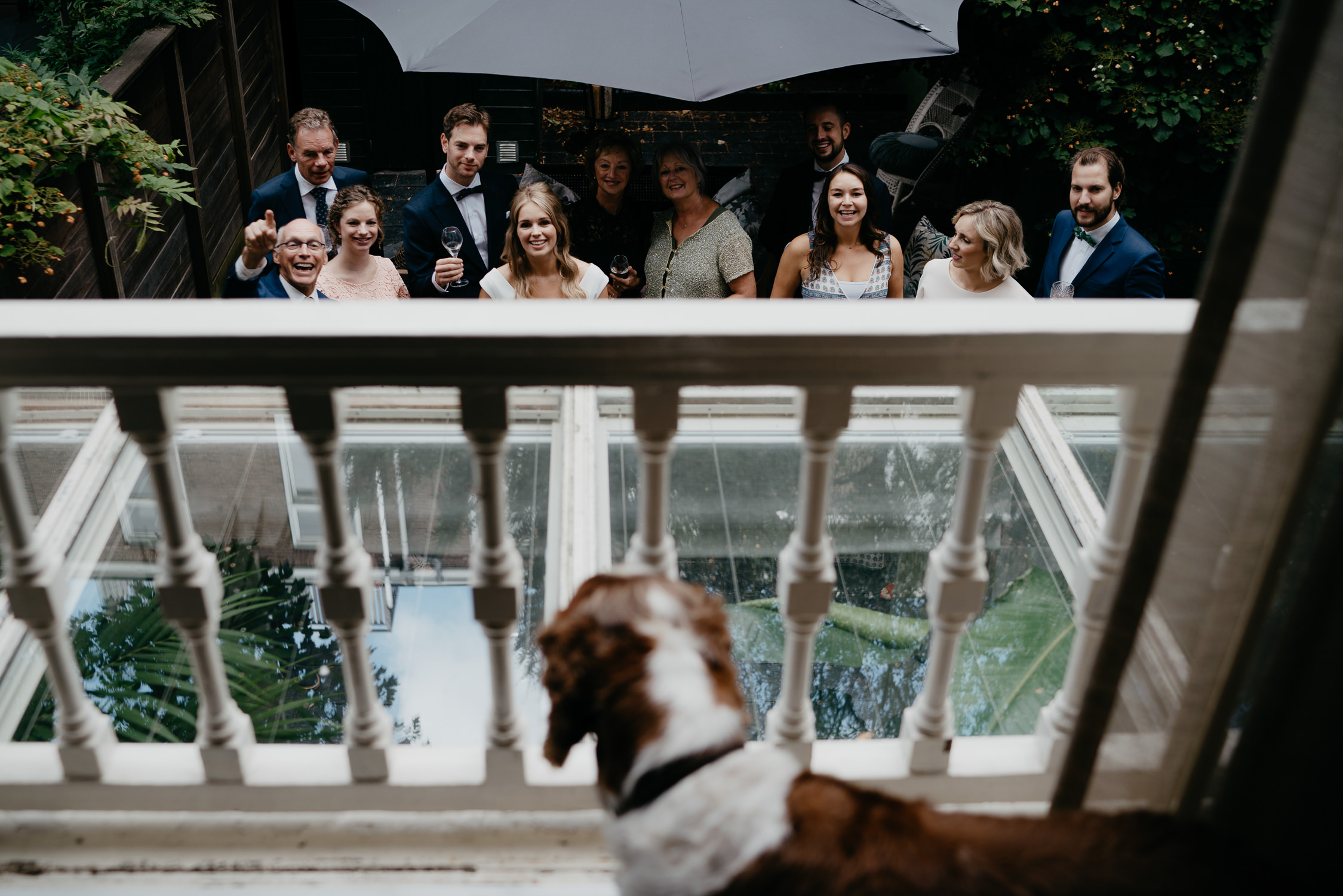 dog at wedding reception wedding photography amsterdam