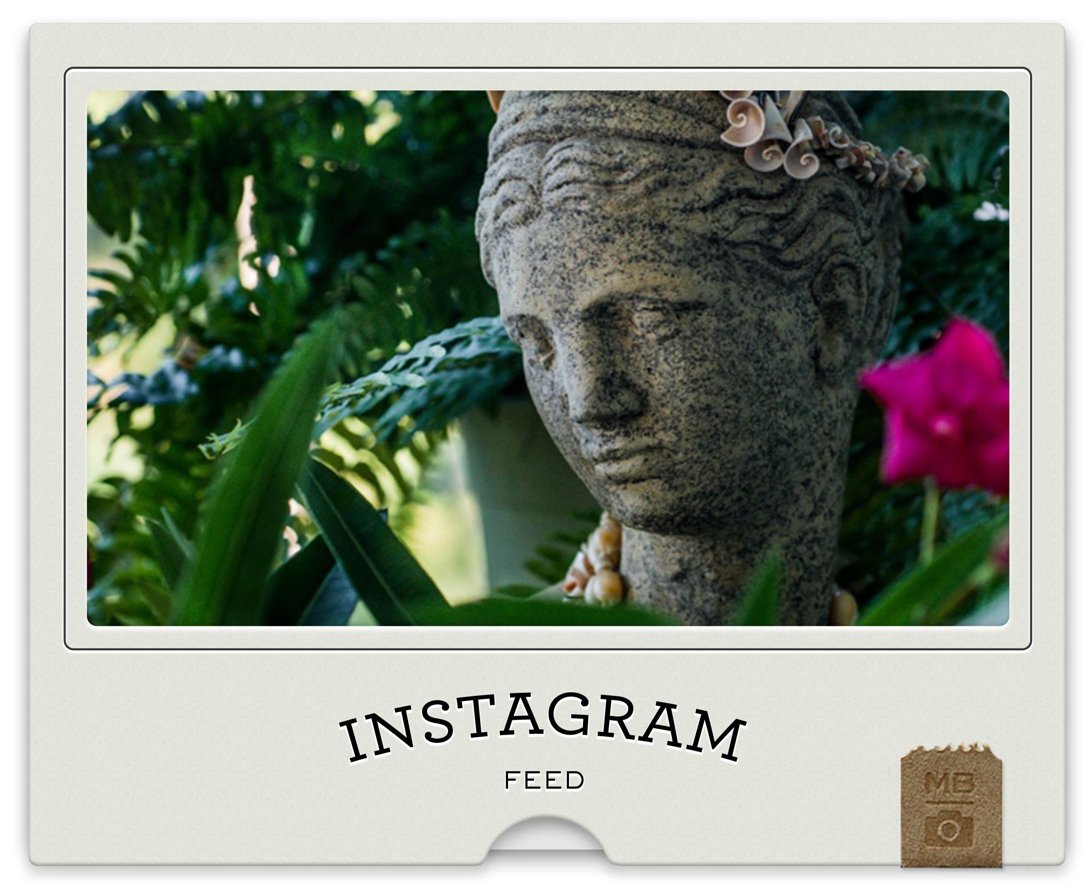 Instagram-Thumb.jpg