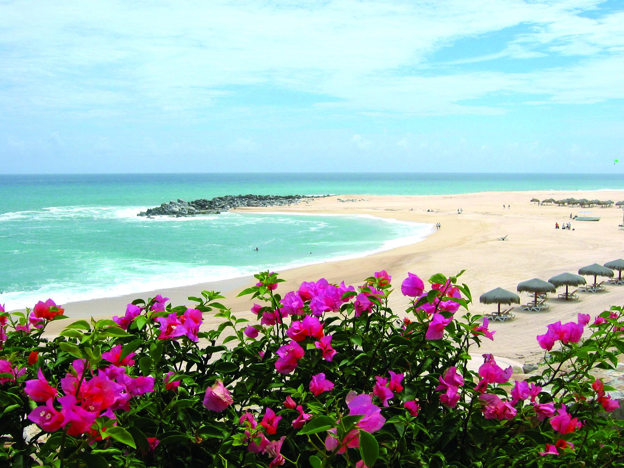Cabo Beach.jpg